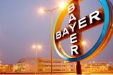 Bayer's due diligence procedures for M&A transactions are appropriate, special audit confirms